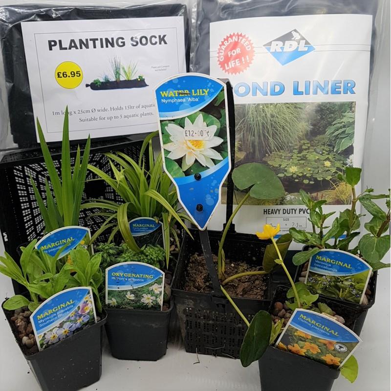 Wildlife Pond Starter Kit - #2