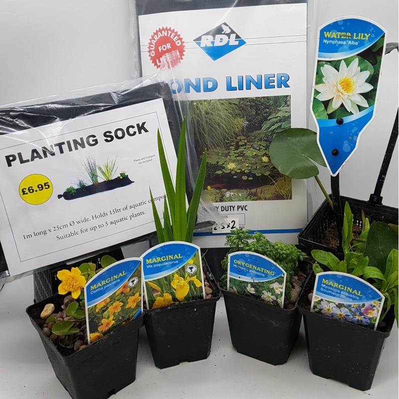 Wildlife Pond Starter Kit - #1