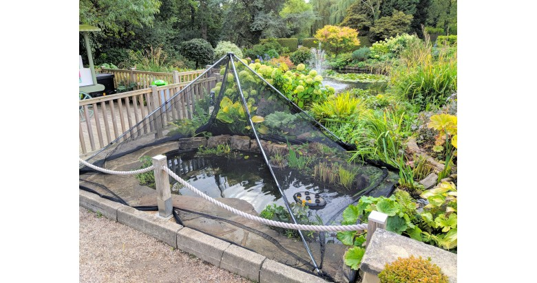 Pond Cover Net and support