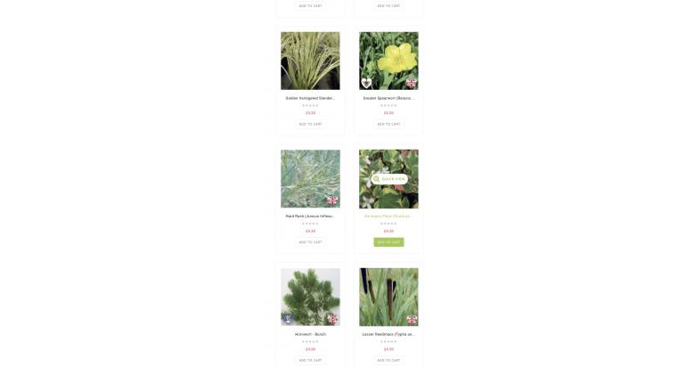 Online Aquatic Plants