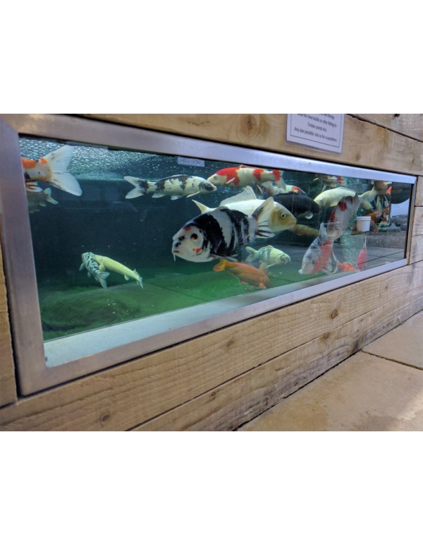 10% off Koi pond viewing windows