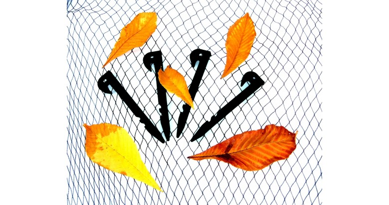 Net your pond against falling leaves